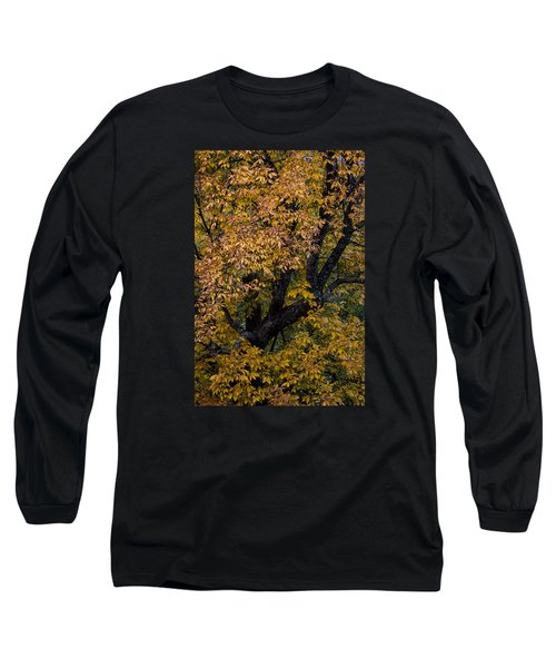 Fall Color Virginia West Virginia Long Sleeve T-Shirt