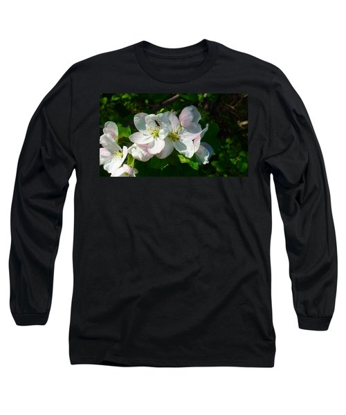 Long Sleeve T-Shirt featuring the photograph Apple Blossoms by Johanna Bruwer