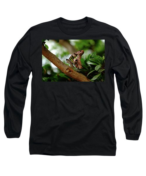Tailed Jay Long Sleeve T-Shirt by Ronda Ryan