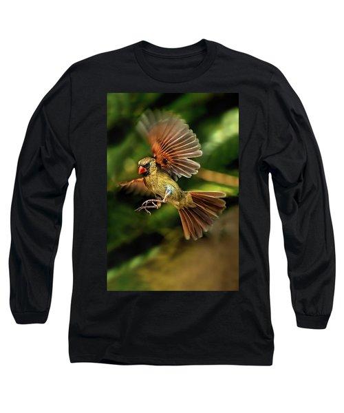 A Cardinal Approaches Long Sleeve T-Shirt