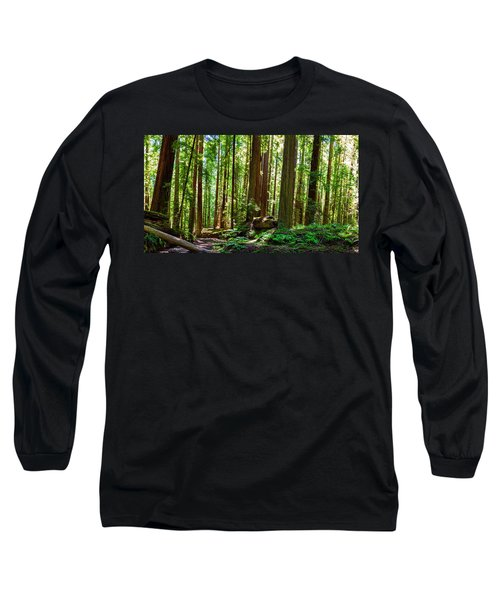 A Family Of Redwoods Panorama Long Sleeve T-Shirt