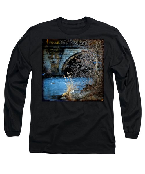 A Frozen Corner In Central Park Long Sleeve T-Shirt