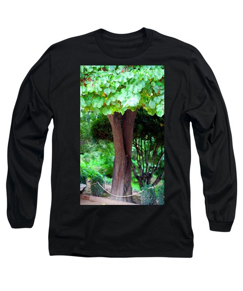 Long Sleeve T-Shirt featuring the photograph A Tree Lovelier Than A Poem by Madeline Ellis