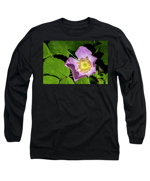 Long Sleeve T-Shirt featuring the photograph Alberta Wild Rose Opens For Early Sun by Darcy Michaelchuk