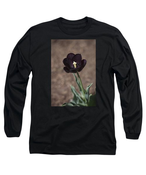 All Darkness And Light Long Sleeve T-Shirt by Morris  McClung