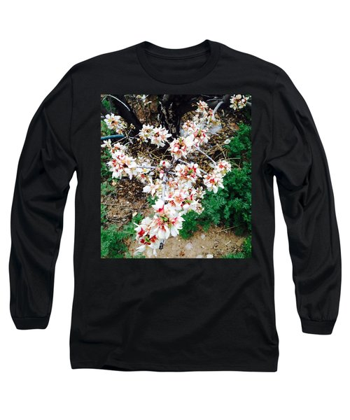 Long Sleeve T-Shirt featuring the photograph Almond Blossoms by Erika Chamberlin