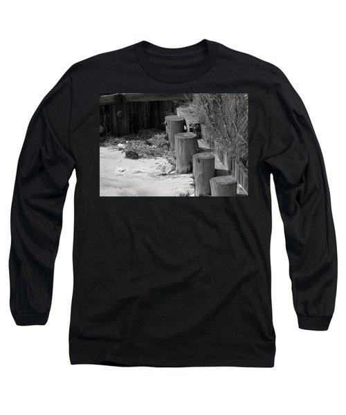Along The Shore Long Sleeve T-Shirt