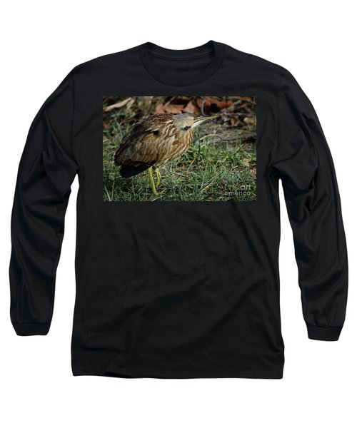 American Bittern Long Sleeve T-Shirt by Douglas Stucky