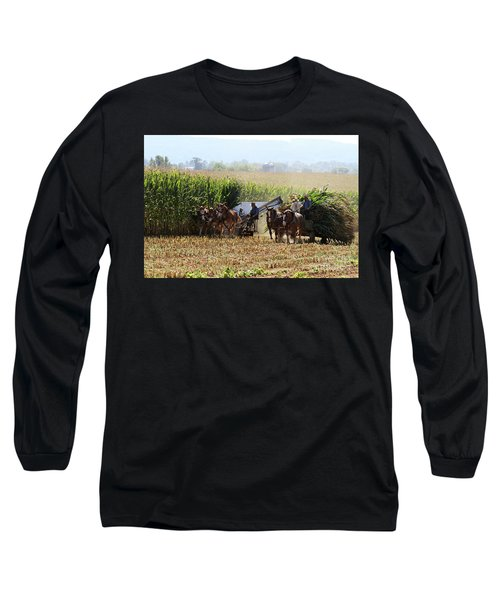 Amish Men Harvesting Corn Long Sleeve T-Shirt