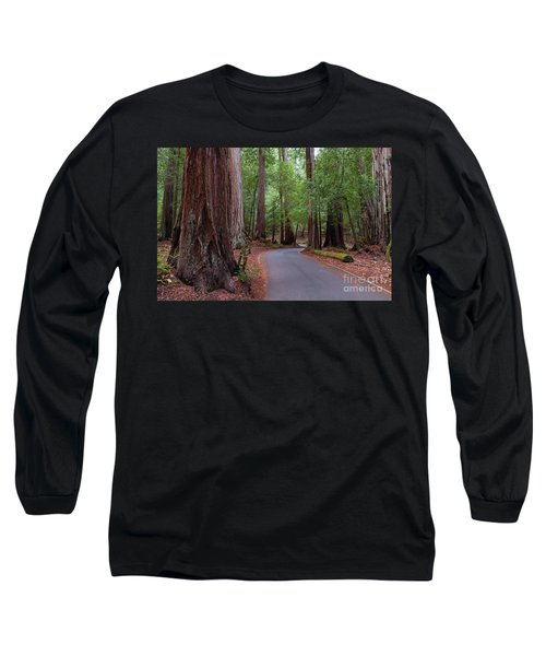 Ancient Redwoods Long Sleeve T-Shirt