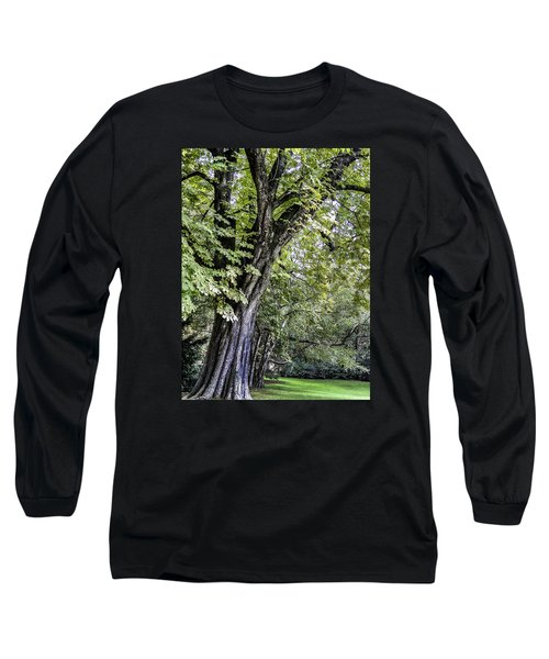Long Sleeve T-Shirt featuring the photograph Ancient Tree Luxembourg Gardens Paris by Sally Ross