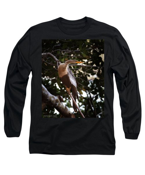 Anhinga Water Fowl Long Sleeve T-Shirt