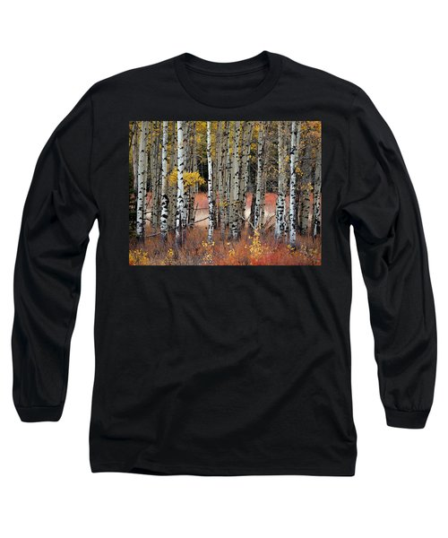 Appreciation II Long Sleeve T-Shirt