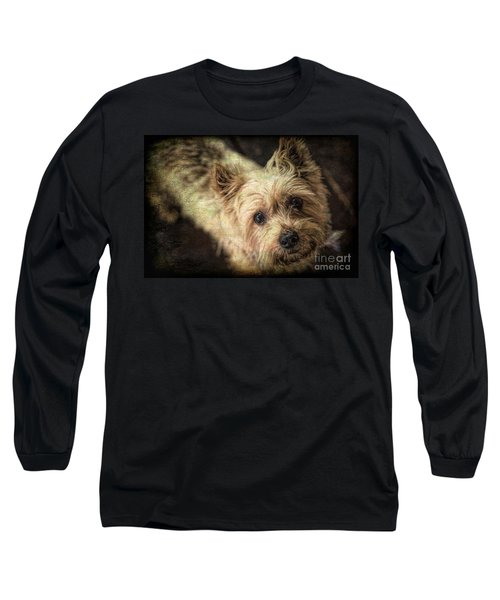 Arigato Long Sleeve T-Shirt by Lynn Sprowl