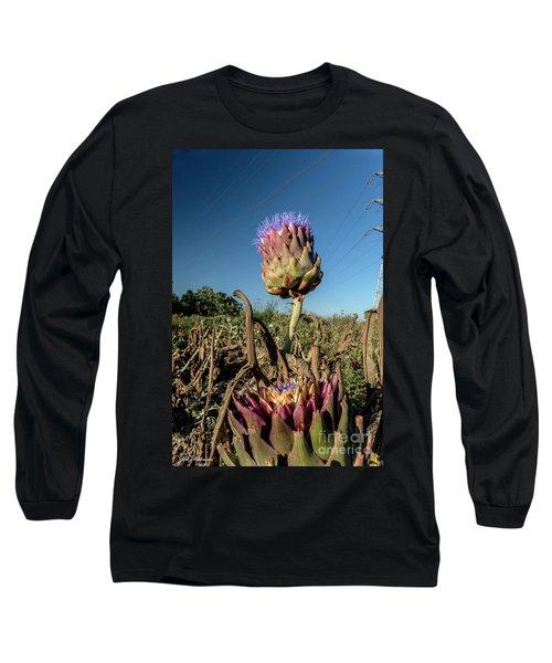 Artichoke, 02 Long Sleeve T-Shirt