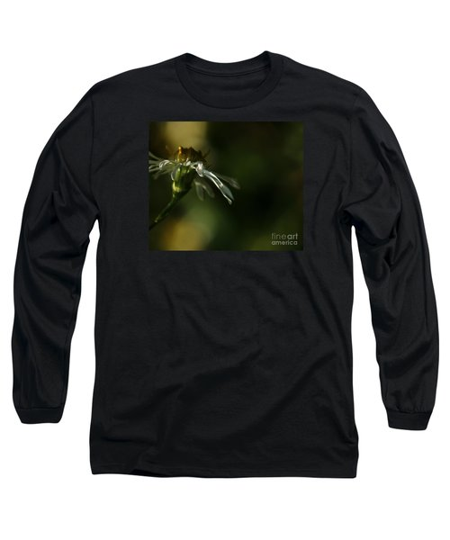 Aster's Peripheral Ray Long Sleeve T-Shirt