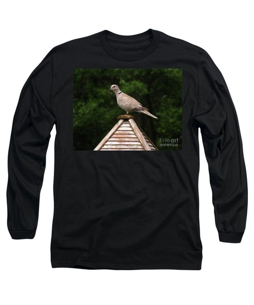 At The Top Of The Bird Feeder Long Sleeve T-Shirt by Donna Brown