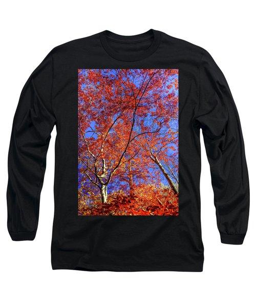 Long Sleeve T-Shirt featuring the photograph Autumn Blaze by Karen Wiles