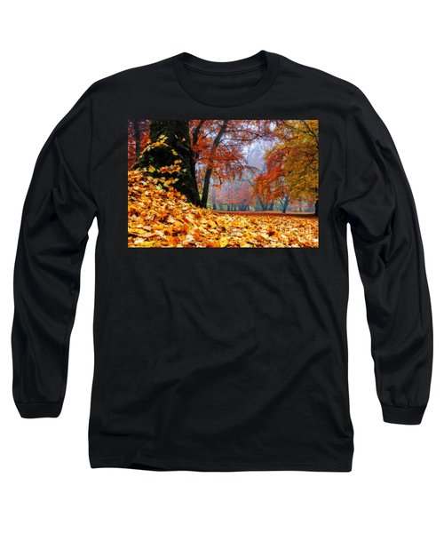 Autumn In The Woodland Long Sleeve T-Shirt by Hannes Cmarits