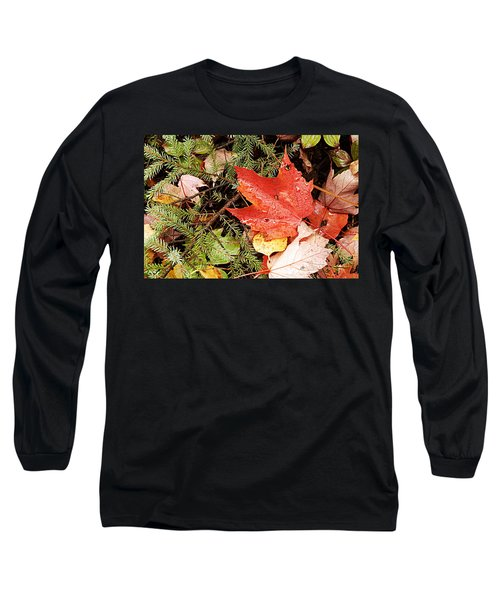 Autumn Leaves Long Sleeve T-Shirt by Larry Ricker