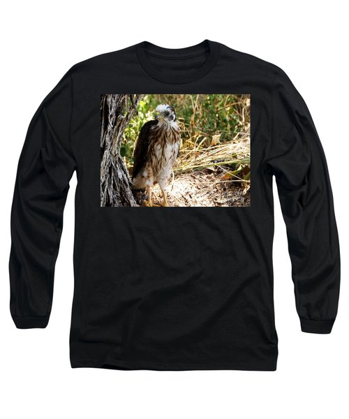 Baby Hawk Fell Out Of Nest Long Sleeve T-Shirt