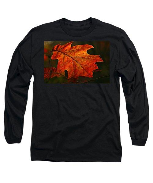 Backlit Leaf Long Sleeve T-Shirt by Shari Jardina