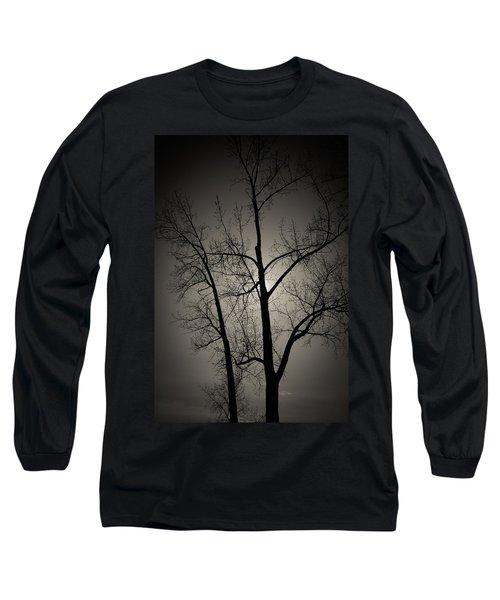 Backlit Trees Long Sleeve T-Shirt