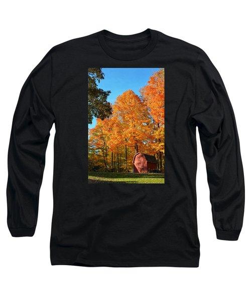 Backyard Beauty Long Sleeve T-Shirt by Nikki McInnes