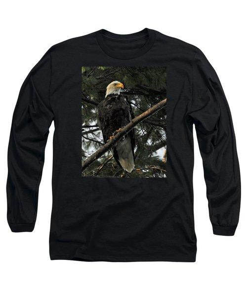 Long Sleeve T-Shirt featuring the photograph Bald Eagle by Glenn Gordon