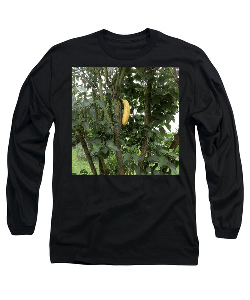 Banana Tree  Long Sleeve T-Shirt
