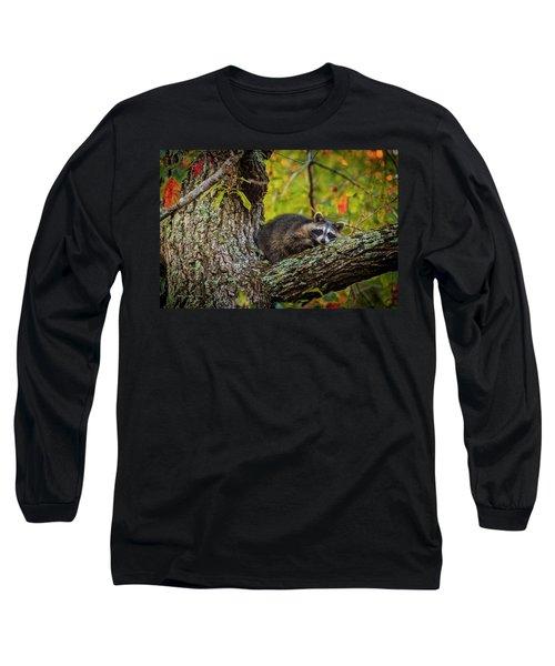 Bandit #2 Nap Time Long Sleeve T-Shirt
