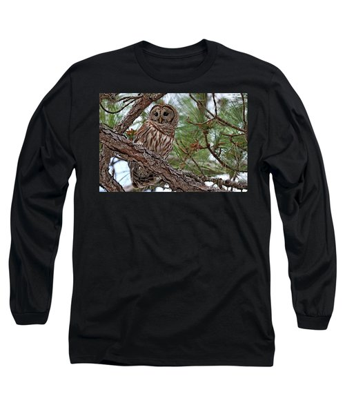 Barred Owl Perched In Tree Long Sleeve T-Shirt