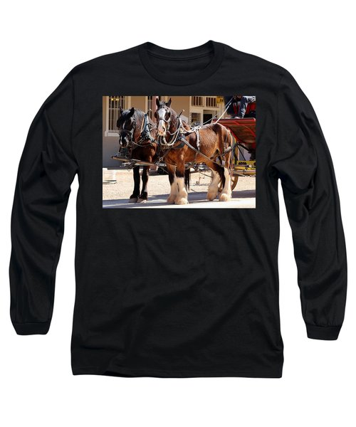 Bay Colored Clydesdale Horses Long Sleeve T-Shirt
