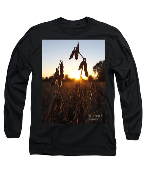 Beans At Sunset Long Sleeve T-Shirt