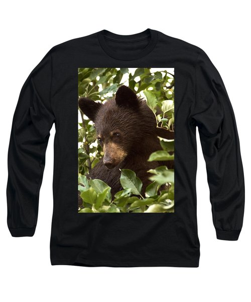 Bear Cub In Apple Tree2 Long Sleeve T-Shirt