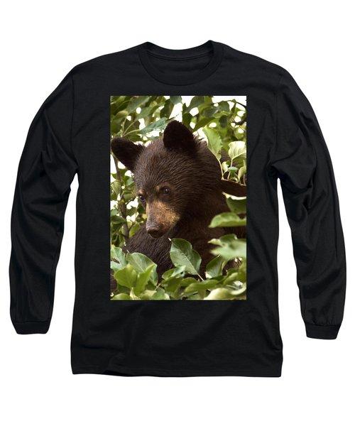 Bear Cub In Apple Tree2 Long Sleeve T-Shirt by Loni Collins
