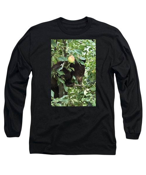 Bear Cub In Apple Tree5 Long Sleeve T-Shirt by Loni Collins