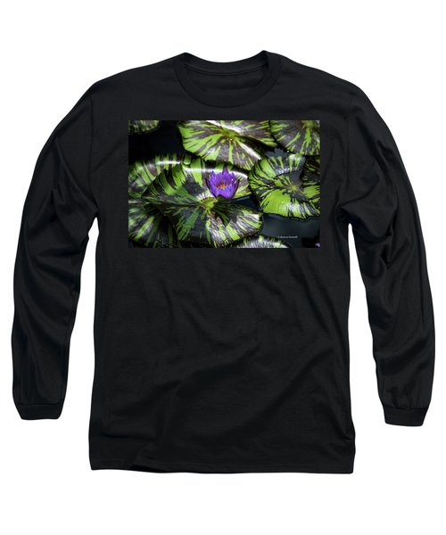 Beauty Rises To The Top Long Sleeve T-Shirt