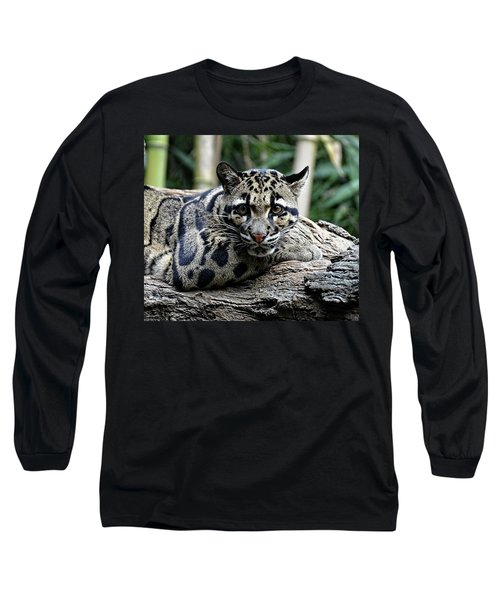Clouded Leopard Beauty Long Sleeve T-Shirt