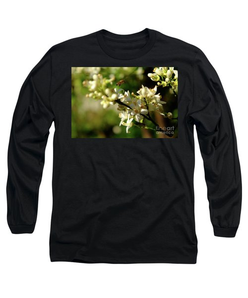 Bee Amongst The Flowers Long Sleeve T-Shirt