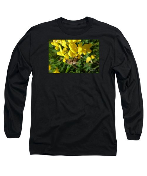 Bee And Broom In Bloom Long Sleeve T-Shirt
