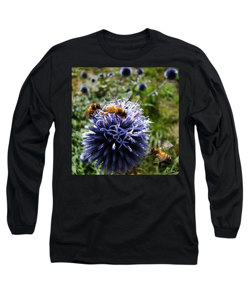 Bee Circles Long Sleeve T-Shirt