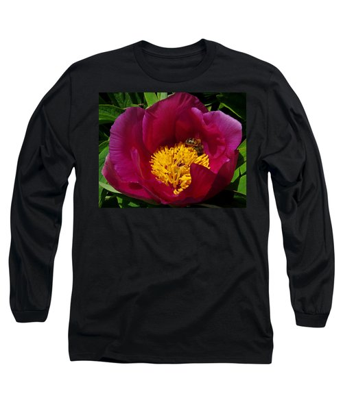 Bee On A Burgundy And Yellow Flower3 Long Sleeve T-Shirt