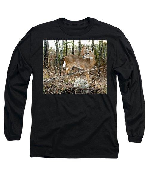 Beloved Tzav Long Sleeve T-Shirt by Bill Stephens
