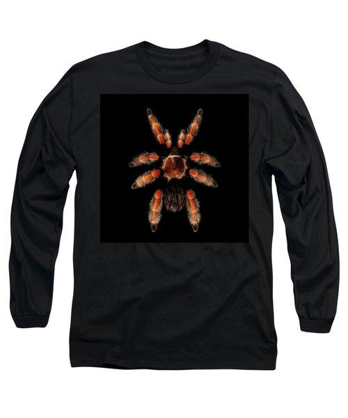 Big Spider Brachypelma Boehmei Long Sleeve T-Shirt