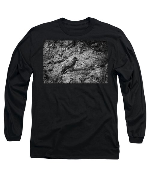 Bighorn Sheep Ewe On Wolf Creek Pass Long Sleeve T-Shirt