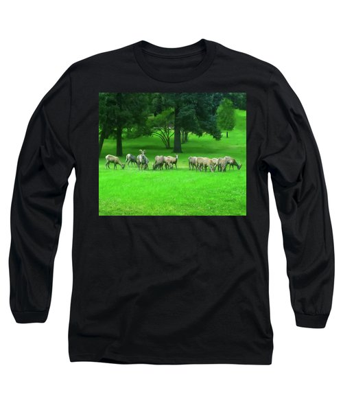 Long Sleeve T-Shirt featuring the digital art Bighorn Sheep Ewes  by Chris Flees