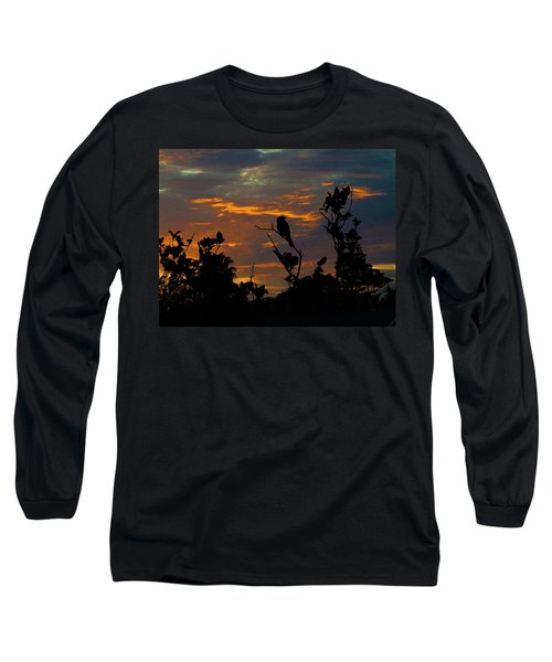 Bird At Sunset Long Sleeve T-Shirt by Mark Blauhoefer