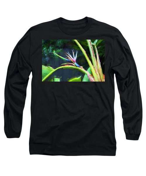 Bird Of Paradise Strelitzia Reginae 003 Long Sleeve T-Shirt