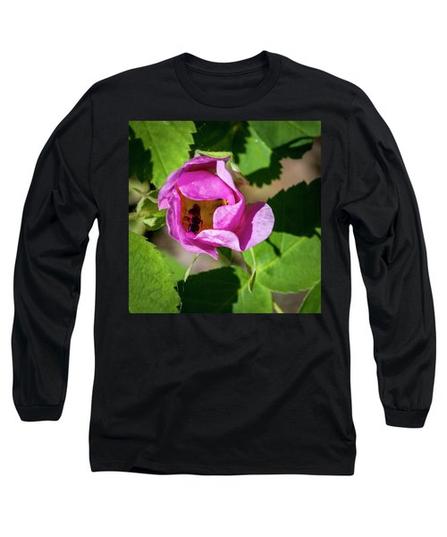 Long Sleeve T-Shirt featuring the photograph Black Bee Collecting Pollen by Darcy Michaelchuk
